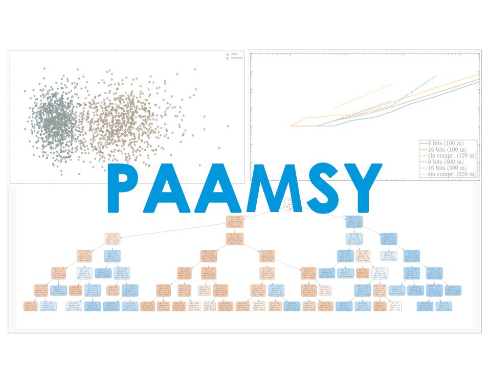 PAAMSY