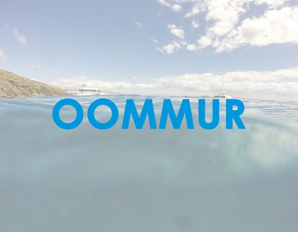 Proyecto OOMMUR
