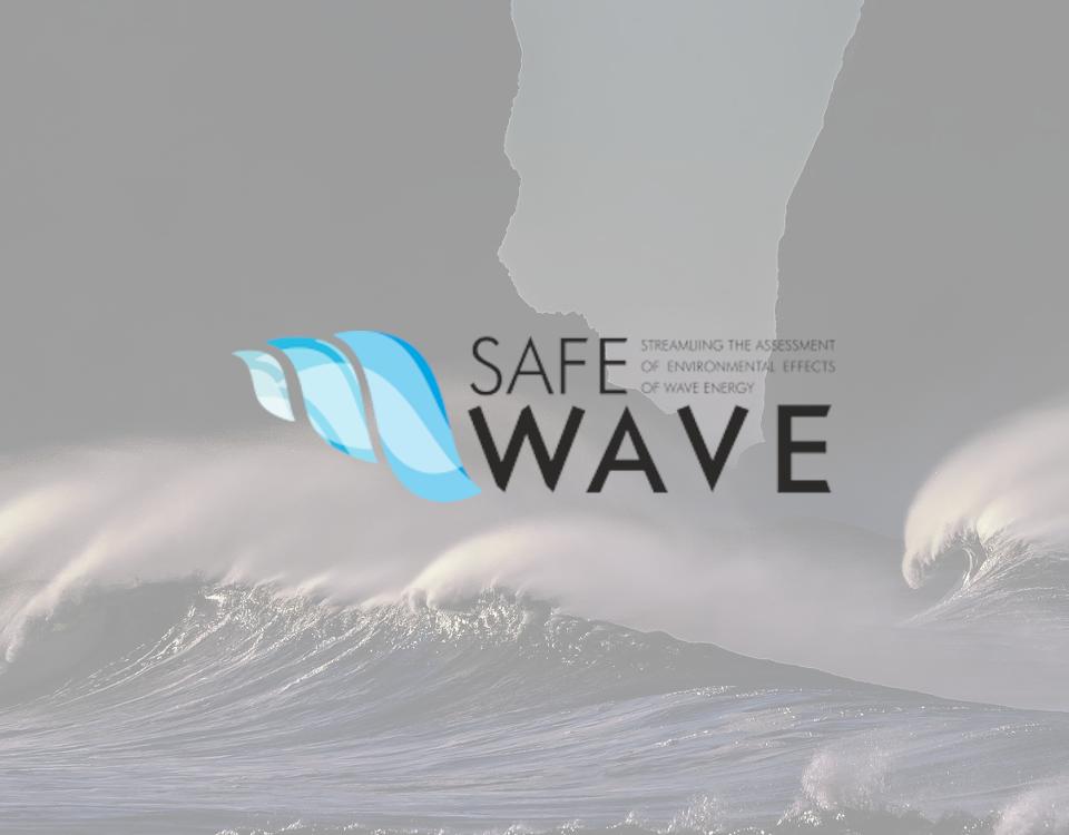 Logo SAFEWAVE